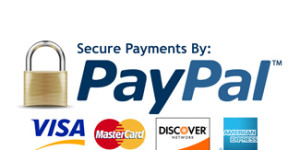 Shop with PayPal