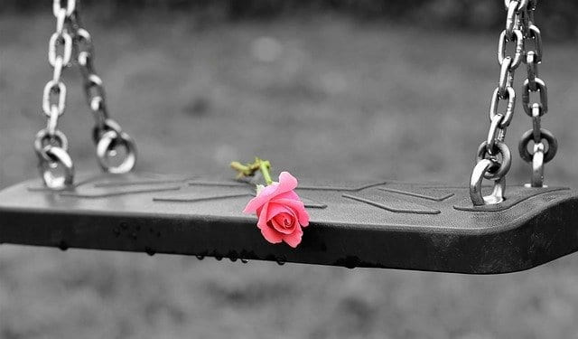 swing-rose-empty-playground